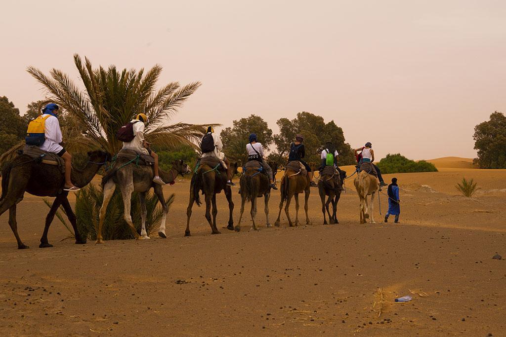 Erg Chebbi/Merzouga Desert